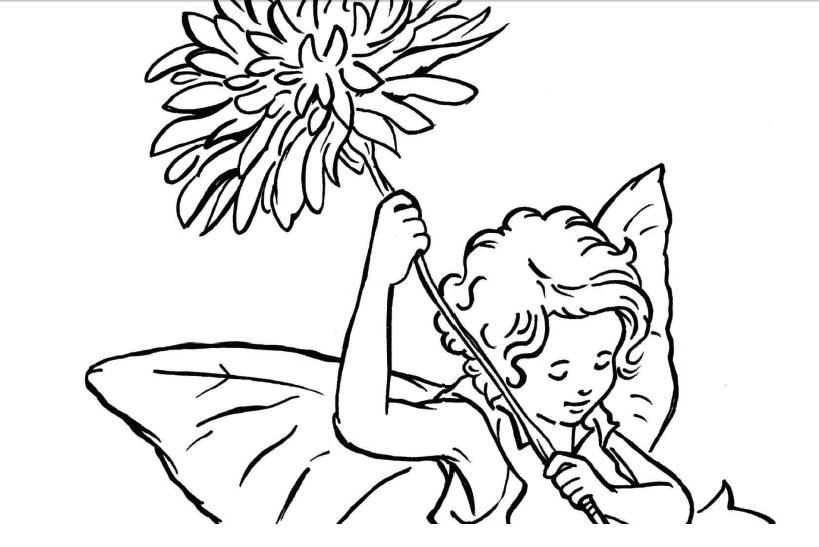 cotton kiwi flower fairy party. Black Bedroom Furniture Sets. Home Design Ideas