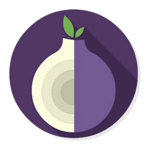 Everything About Tor: What is Tor? How Tor Works?