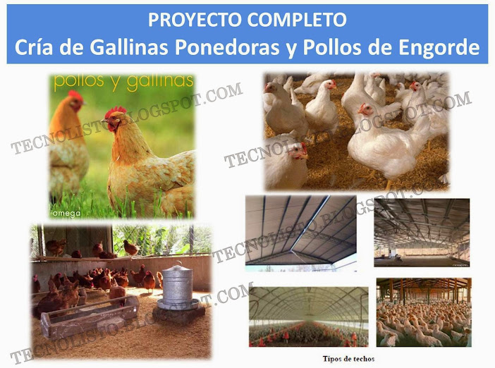 """Manual cria de gallinas ponedoras"""