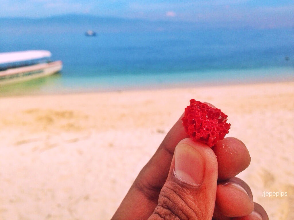 Pink Beach of the Zambonga Philippines