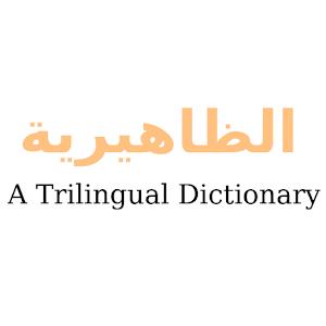 Trilingual Dictionary Application