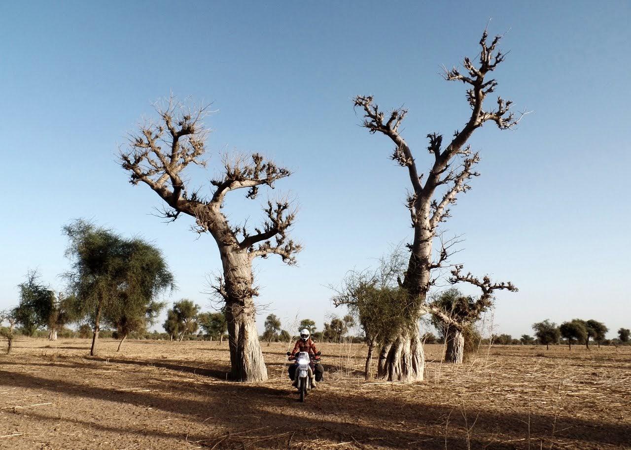 podróż motocyklowa do afryki