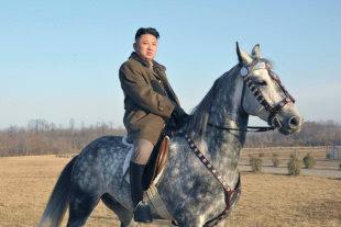 North Korea admits farming failures amid food shortage