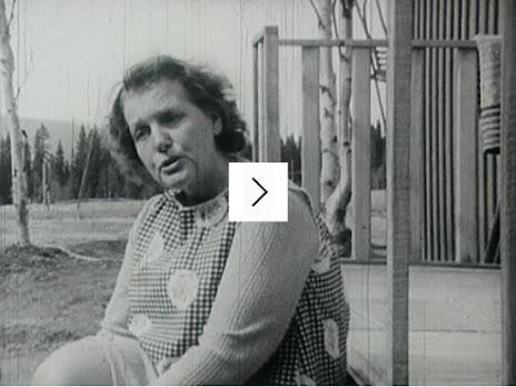 http://www.filmarkivet.se/movies/norrlandsproblemet/